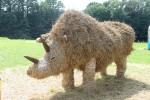 stastna zeme slameny nosorozec