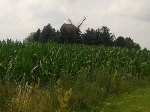 krajina kolem Wahlsdorfu