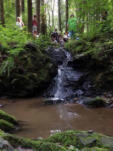 olesensky potok