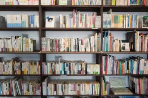 mestska knihovna