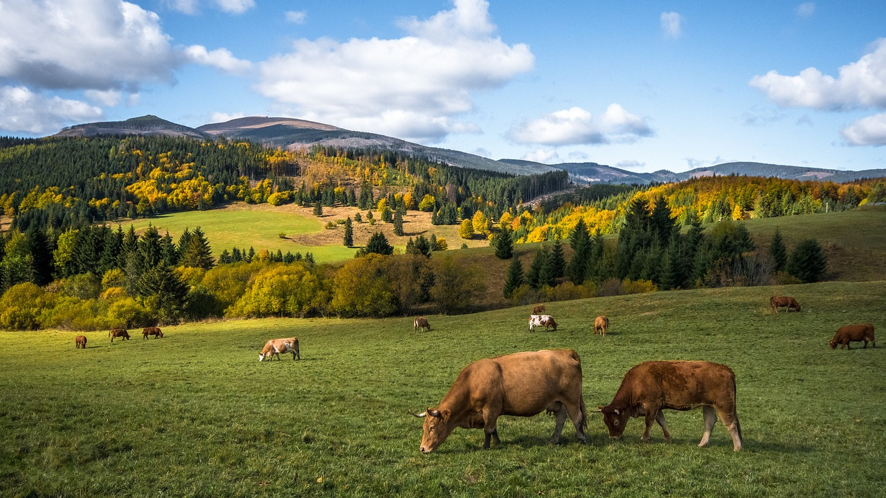 slovenske tatry
