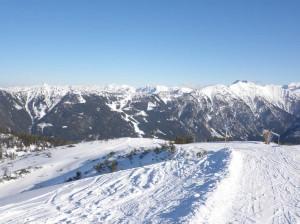 Francie v zimě