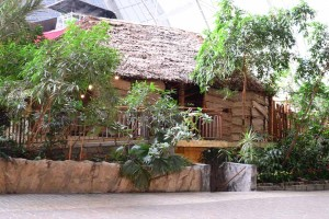 Nezapomenutelné atrakce v Tropical Islands
