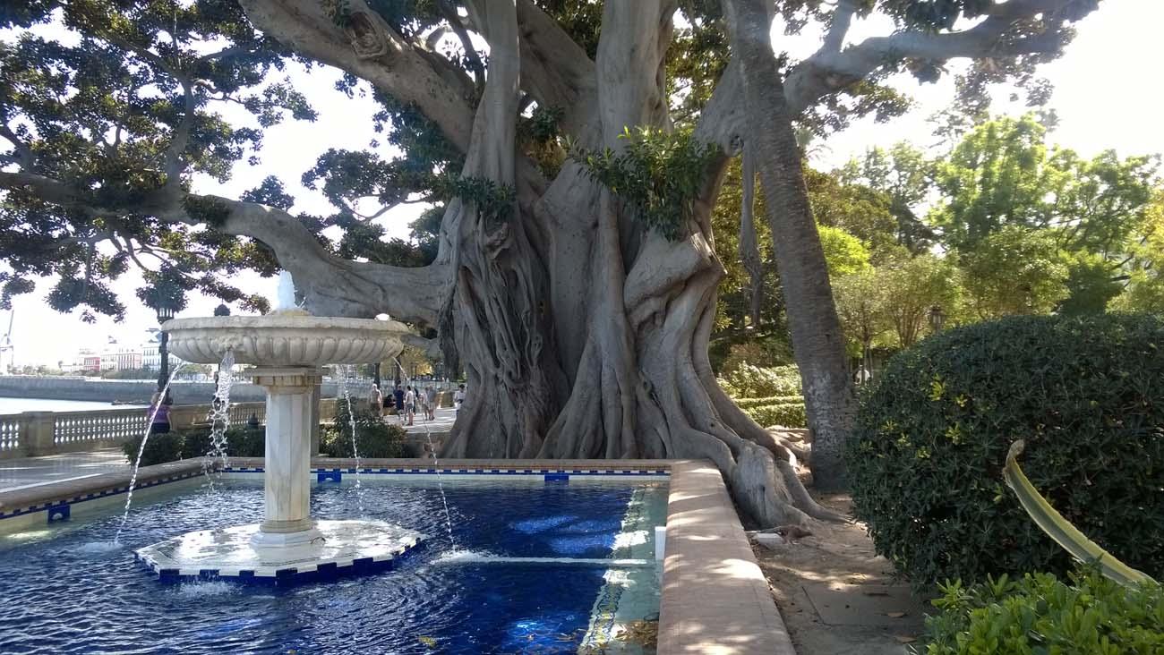 Parky Alameda Apodaca a Marqués de Comillas v Cádizu